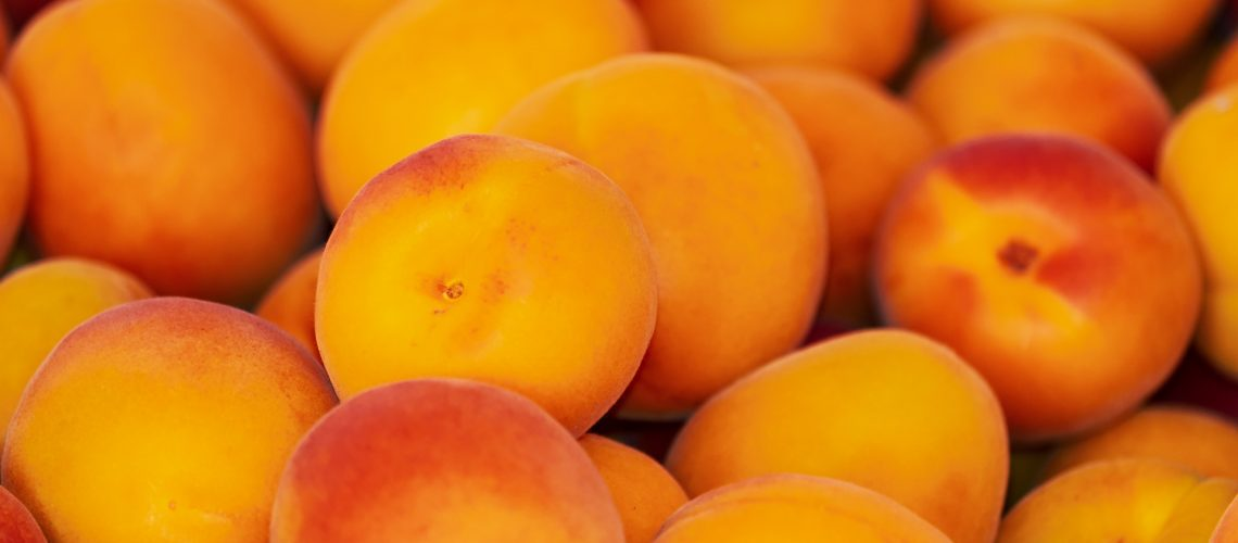 What Are The Different Types Of Apricots?