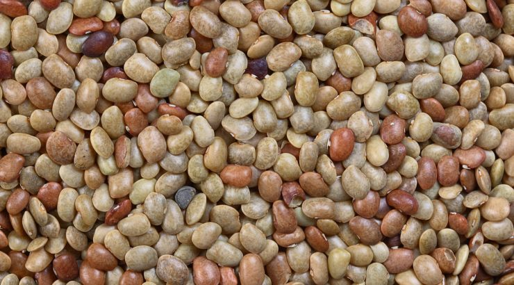 Horse Gram Health Benefits – What Should You Know About This Super Food?